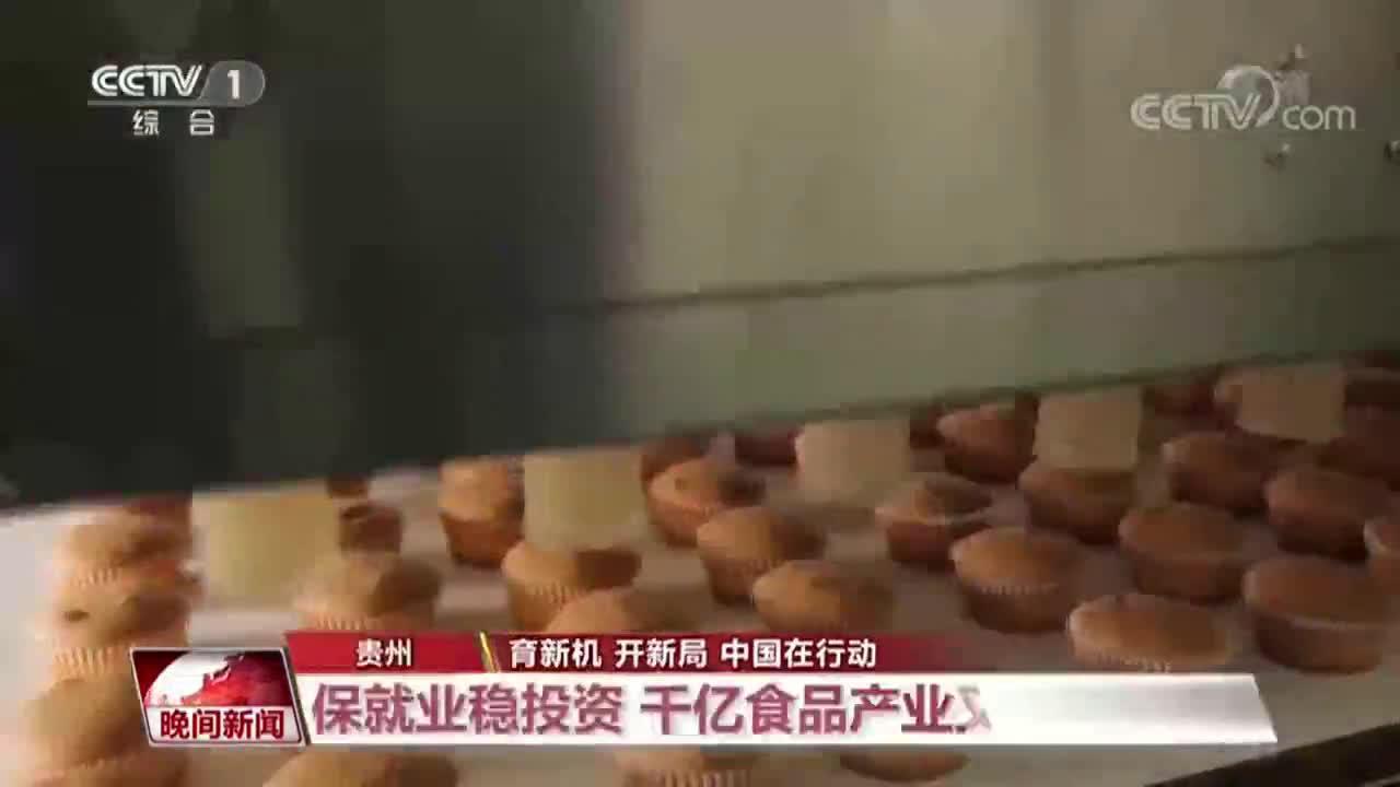 央视《晚间新闻》关注贵州保就业稳投资:千亿食品产业又添新军