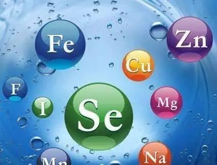 镁的每日推荐摄入量是多少 镁吸收的相关因素