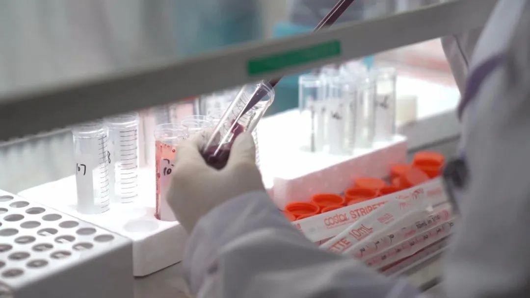 杏悦:995%陈薇团队疫苗最新数据杏悦图片