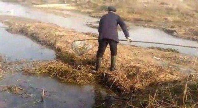 农民河边水草里捞东西,短短半分钟就捞到了宝贝,让人羡慕不已!