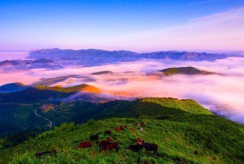 韩少功:重返雪峰山