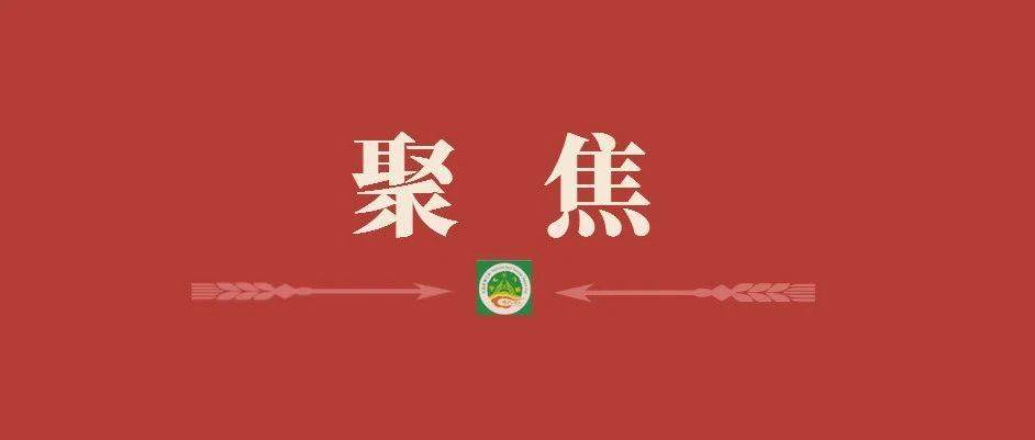 央视《晚间新闻》关注盼盼食品落地贵阳!