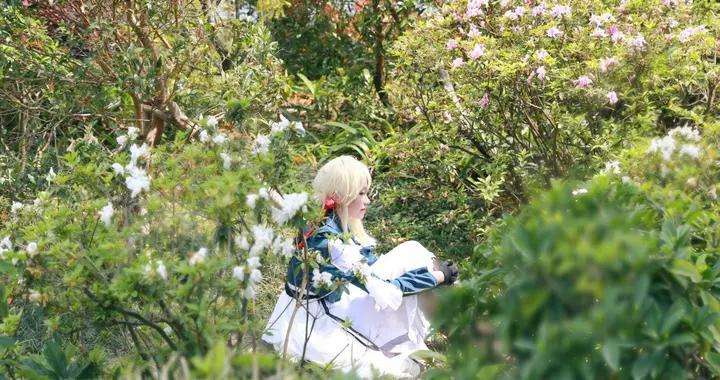 紫罗兰永恒花园,薇尔莉特·伊芙加登cosplay