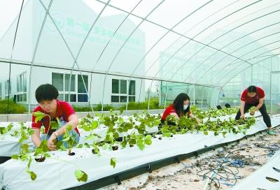 http://www.reviewcode.cn/bianchengyuyan/159904.html