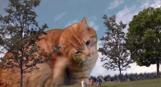 你没看过的侏罗纪公园,史前橘兽,大橘为重啊