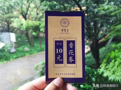 杭州这座千年名寺,素斋特别好吃,大素鹅一条才7元