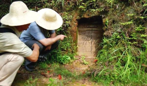 男子发现神秘洞穴,进去被里面场景吓到,打开后全是宝贝