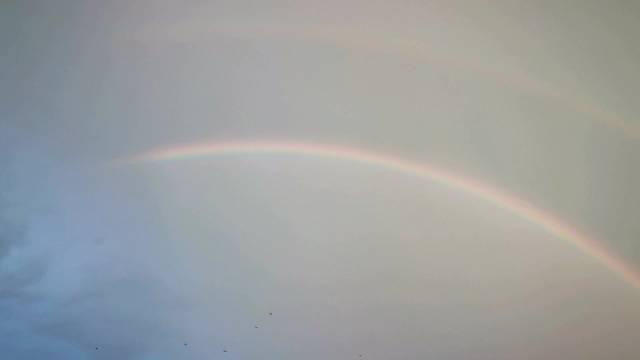 今天基地附近同时出现双彩虹,太阳雨,丁达尔以及最美晚霞