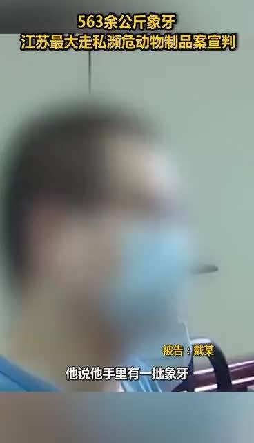 563公斤象牙!江苏最大走私濒危动物制品案宣判,男子被判11年