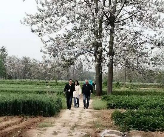 """""""纪巡联动""""护民利——""""纪律+巡察""""监督模式的谯城实践"""