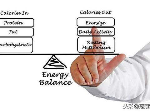 膳食营养素参考摄入量(DRIs)