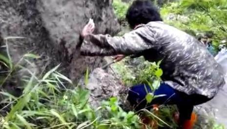 农村男子在山中发现一个小洞,里面居然藏着个大宝贝