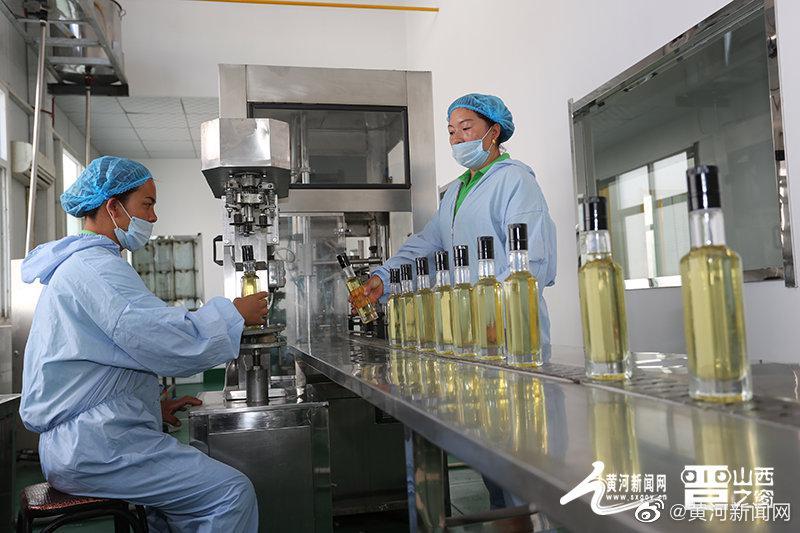"""山西产业扶贫产品展播:蒲县""""养益牌""""核桃油"""