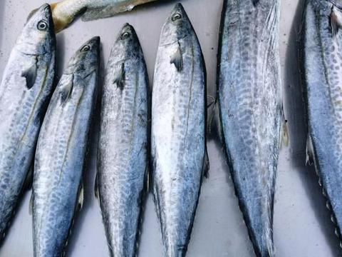 拯救夏天没胃口,这鱼鲜嫩可口,不腥也不腻,比红烧好吃多了!