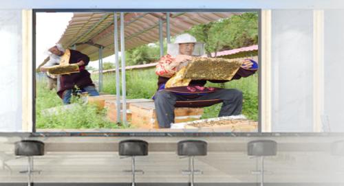 知了知屏帮助偏远地区搭建三农教育平台