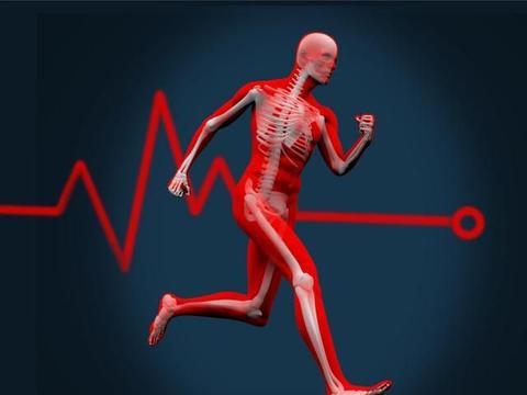 从跑步小白进阶精英跑者,关于心率的一切你必须知道!