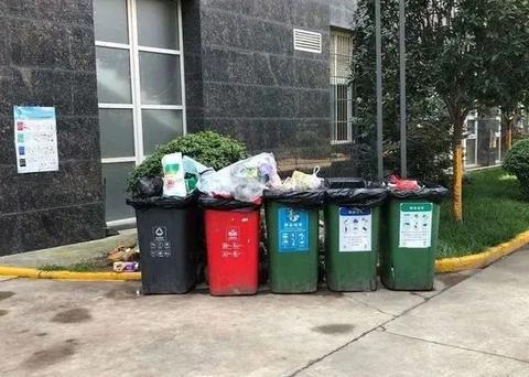碑林区城管执法局对媒体曝光垃圾分类问题进行督导检查