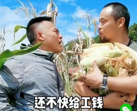 """49岁""""欧阳锋""""回乡种地,为抢玉米和人大吵!因母亲过劳死生活节俭"""