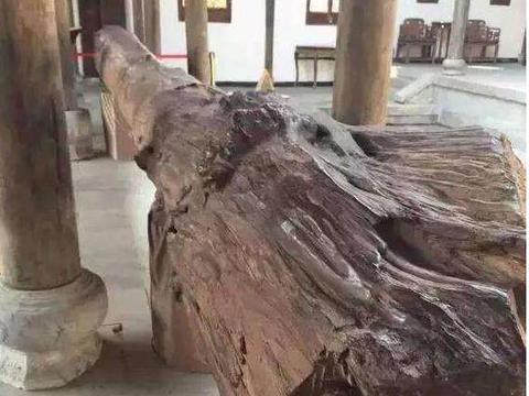 就是一根烂木头,土豪给出2个亿,竟然还不卖,他咋不上天!