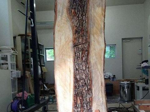 男子山上采回一根普通木头,没想到几周后想看它的人却踏破门槛