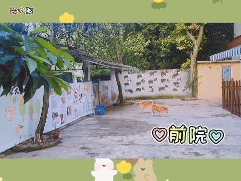 🏡 ♡前院——郁郁葱葱的树下,房屋连接的是狗子们的活动区域