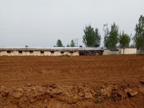 部分农村出现的严峻土地问题,对农民耕种有比较大影响