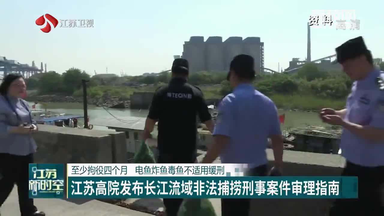 至少拘役四个月 电鱼炸鱼毒鱼不适用缓刑 江苏高院发布长江流域非法捕捞刑事案件审理指南