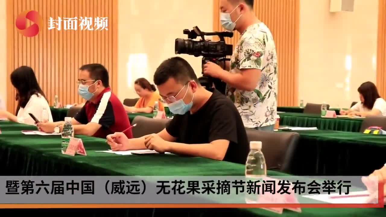 第六届中国(威远)无花果采摘节将于8月6日开幕