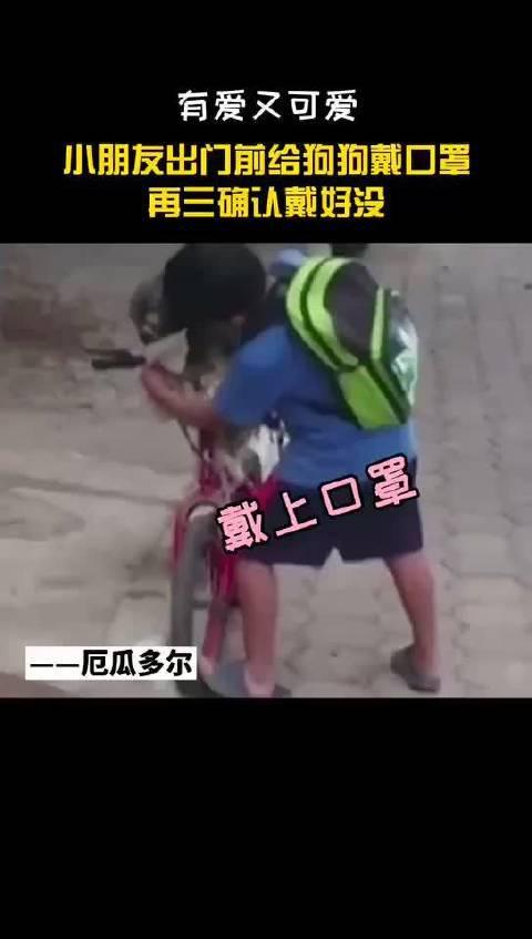 厄瓜多尔小朋友出门前给狗狗戴口罩……