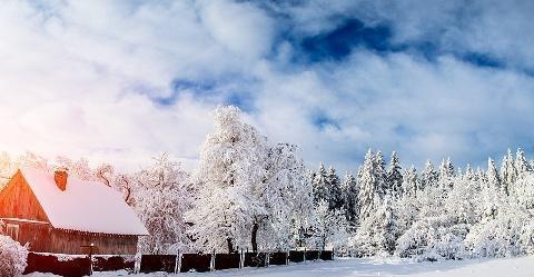 一首诗,一场雪;一片白,一份情