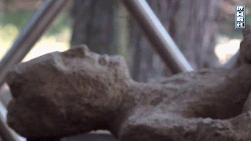 新研究揭开庞贝死城的秘密 Pompeii - New Studies Reveal Secret