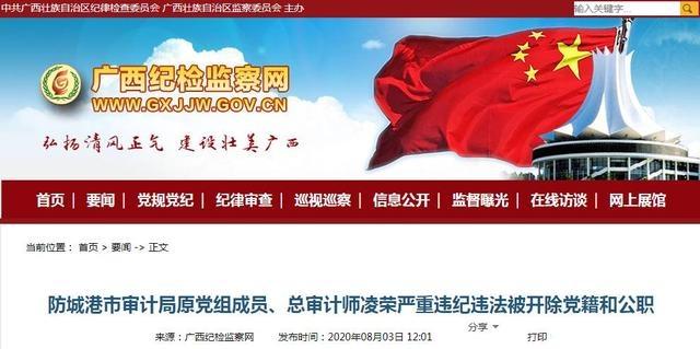 防城港市审计局原党组成员、总审计师凌荣被双开