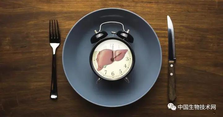 Science:吃饭时间影响生物钟与代谢健康