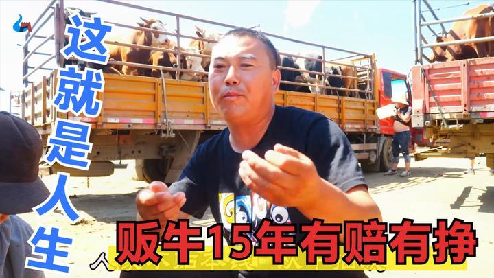 张家口坝上牲畜市场,张北大哥:贩牛十五年有赔有挣,大哥实在人