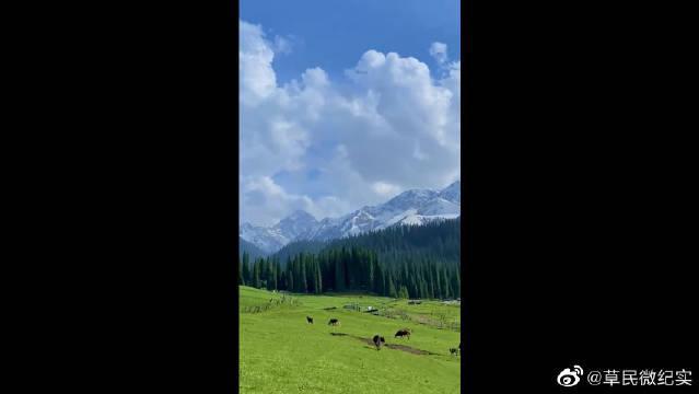 天山脚下的一处秘境,这样的景色能惊艳到你来吗