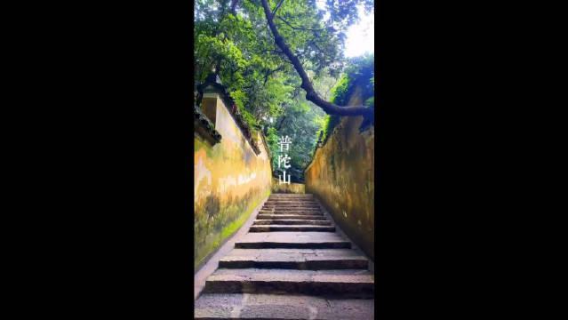 普陀山 一个能让你心绪平静,拂去烦躁的地方