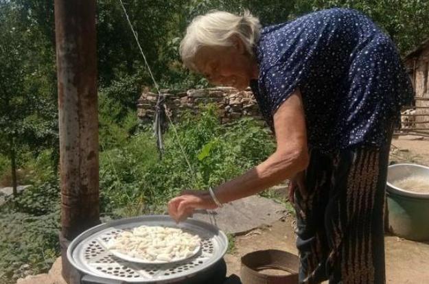 8旬老太在大山里捡白色宝贝, 大火蒸熟后就是200多块钱一斤