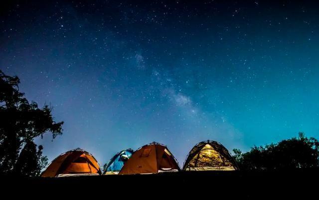 露营活动招募啦!清凉避暑就在济南植物园,自然童趣等您来!