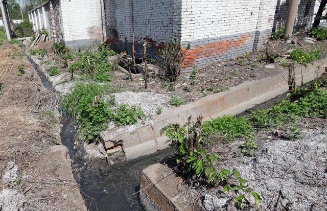 莱西市19处农畜养殖户因粪污臭气熏天,被依法处置
