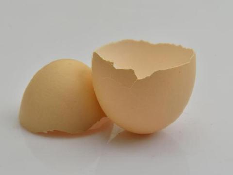 """家里的""""鸡蛋壳""""不要扔,看完这四大功效,后悔知道太晚了!"""
