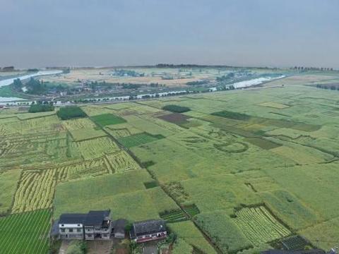 辽宁沈阳300亩养殖用地出租,本溪市明山区5千平米养殖用地出租
