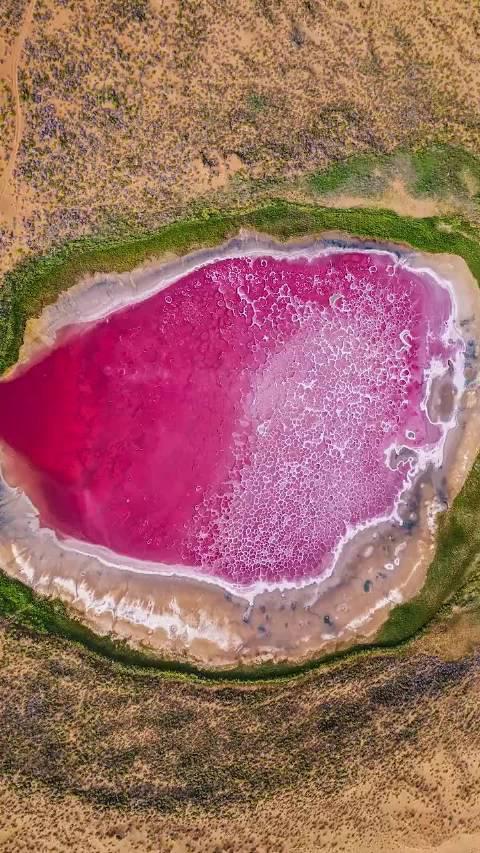 阿拉善沙漠深处的红海子,天然粉红色湖泊……