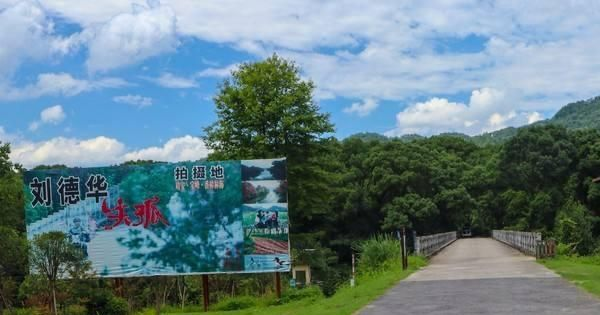 江西宜春小众景点:一片落寞林海竟是刘德华电影《失孤》取景地