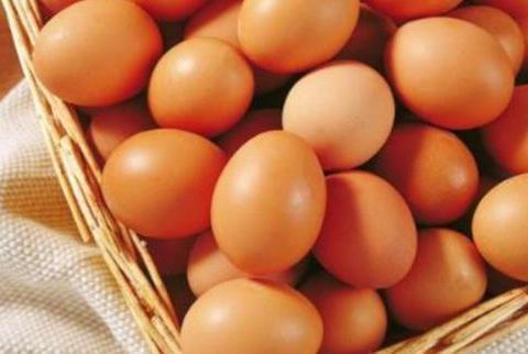 最家常的营养品鸡蛋,在家里该如何长时间保存呢,正确方法是怎样