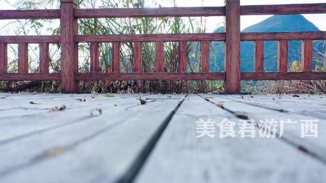 南宁周边游 上林金莲湖