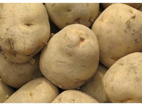教你土豆的新吃法,搭配2个鸡蛋,简单又爽口,比炒土豆丝更好吃