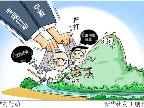宁夏开展严打破坏生态环境及野生动物资源违法犯罪专项行动