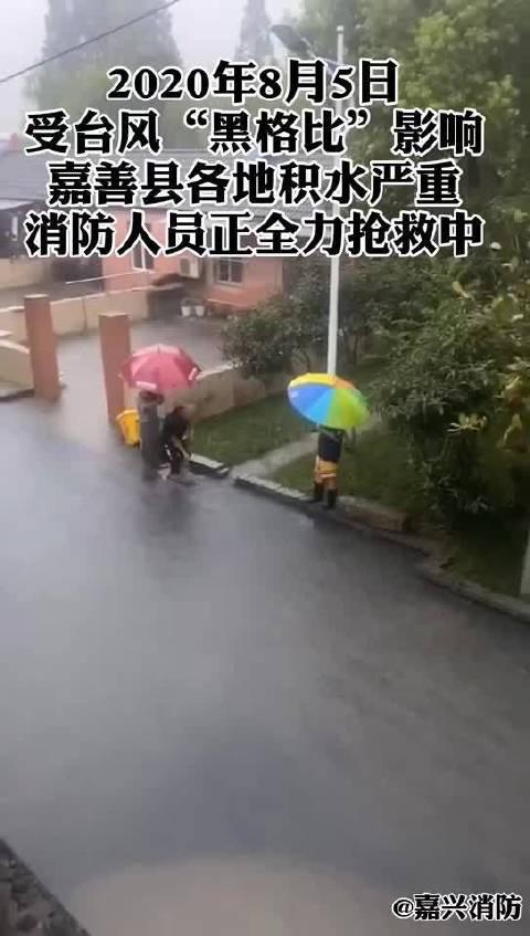 """8月5日,受台风""""黑格比""""影响,嘉善县各地积水严重……"""