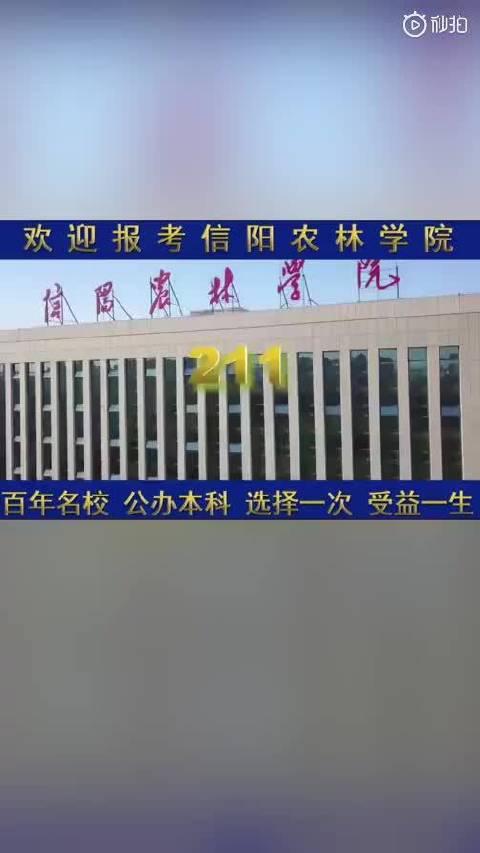 河南大学生制作高校土味宣传片:土到极致就是潮