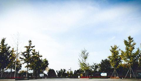 临淄淄河旁边有个人文景区,里边有条长长的空中栈道,非常漂亮